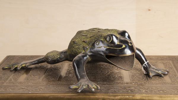 #513 Frosch