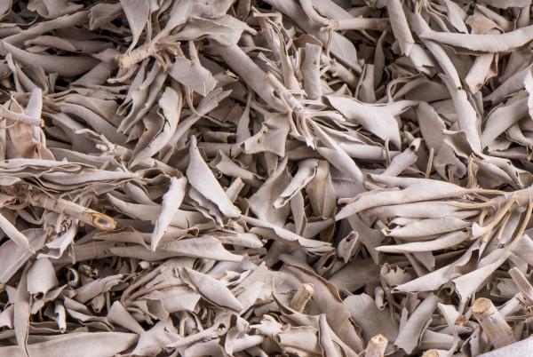 Weißer Salbei, 500 g lose