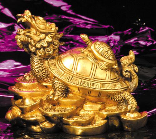 Drachenschildkröte