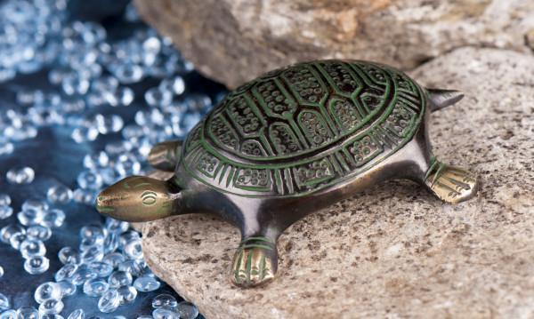 Schildkröte klein, 10,5 cm
